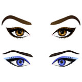 Set of realistic cartoon vector female eyes and eyebrows