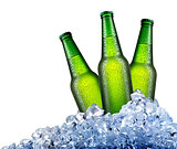 Green bottles in ice