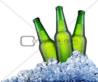 Green bottles in ice