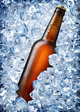 Brown bottle in ice