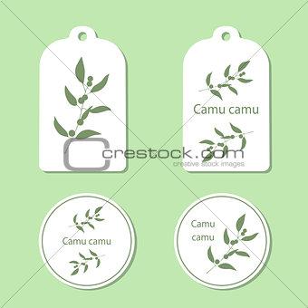 Camu camu leaves and berries