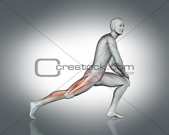 3D male figure in stretching pose