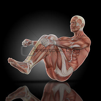 3D render of a medical figure with muscle map in sit up pose