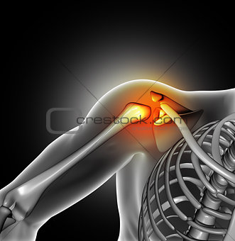 3D medical image of shoulder bone