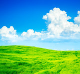 Summer Landscape with Green Field and Blue Sky