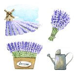 Lavender watercolor set.