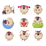 Sheep Character Activities Set