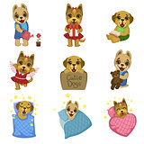 Cute Dog Cartoon Collection
