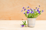Spring flowers in vintage vase on wooden background, rustic style.