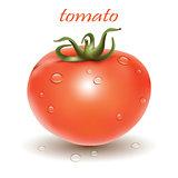 Red fresh tomato.