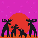 family of moose, sunset, looking at stars