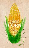 Corn watercolor poster
