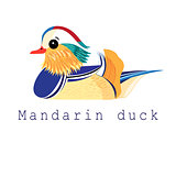 Vector mandarin duck