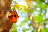 Cute little nesting box