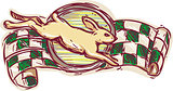 Rabbit Jumping Racing Flag Drawing