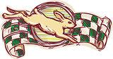 Rabbit Jumping Racing Flag Drawing