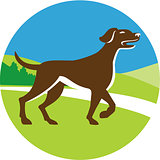 English Pointer Dog Pointing Up Circle Retro