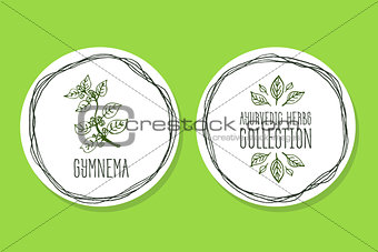 Ayurvedic Herb - Product Label with Gymnema sylvestre