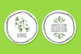 Ayurvedic Herb - Product Label with ginkgo