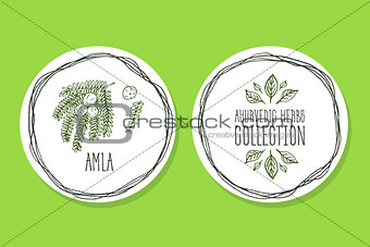 Ayurvedic Herb - Product Label with Amla