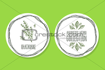 Ayurvedic Herb - Product Label with  Shatavari