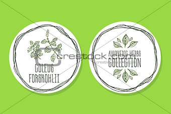 Ayurvedic Herb - Product Label with Coleus forskohlii