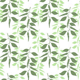 Seamless pattern leaves of green pepper