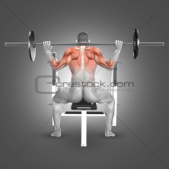 3D male figure in seated barbell press behind neck