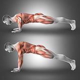 3D Male figure in push up pose