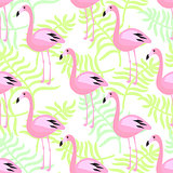 Flamingo seamless pattern. Pink exotic bird background.