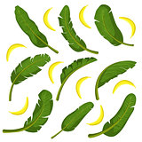 Tropical Leaves  With Bananas
