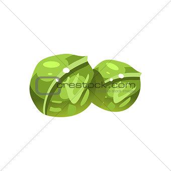 Cabbage Bright Color Simple Illustration