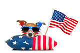 fourth of july independence day dog