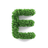 Green leaves E ecology letter alphabet font