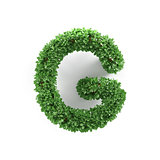 Green leaves G ecology letter alphabet font