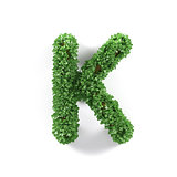 Green leaves K ecology letter alphabet font