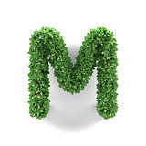 Green leaves M ecology letter alphabet font