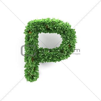 Green leaves P ecology letter alphabet font