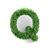 Green leaves Q ecology letter alphabet font
