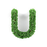 Green leaves U ecology letter alphabet font