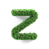 Green leaves Z ecology letter alphabet font