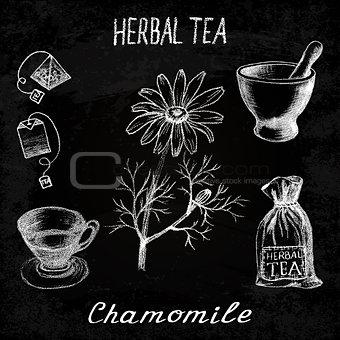Chamomile herbal tea. Chalk board set of vector elements