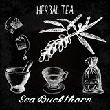 Sea buckthorn herbal tea. Chalk board set of vector elements