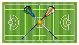 Regulation Lacrosse Field and Sticks