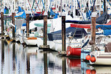 Sailboats in Moorage