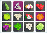 Vegetables flat vector icons set