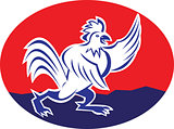 Rooster Chicken Pointing Wing Cartoon