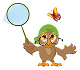 Owl Catches butterfly. Bird and butterfly net