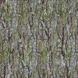 Pine Bark Pattern