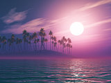 3D palm tree island at sunset